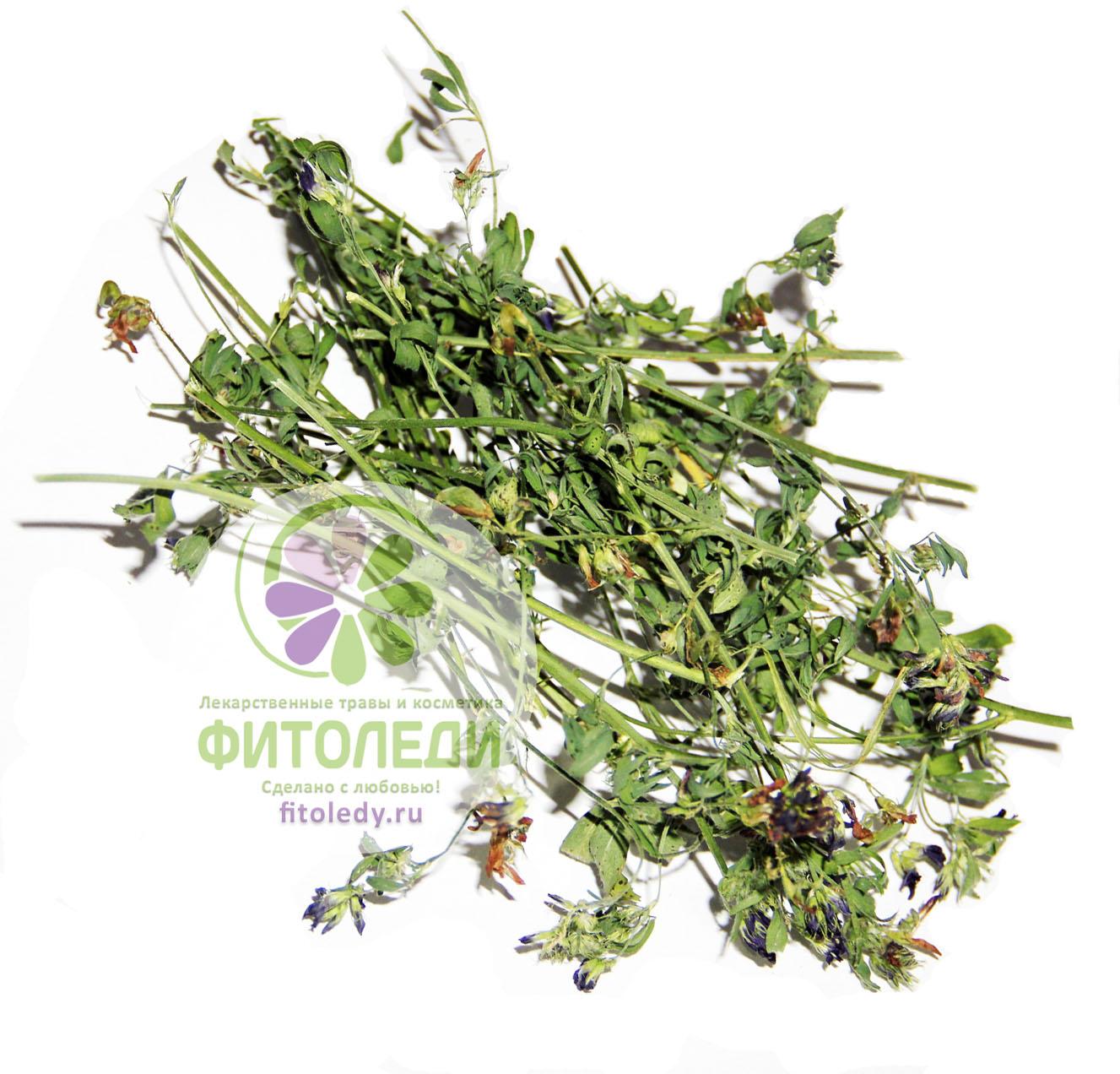 Купить траву люцерны